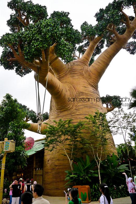 sg2010-4