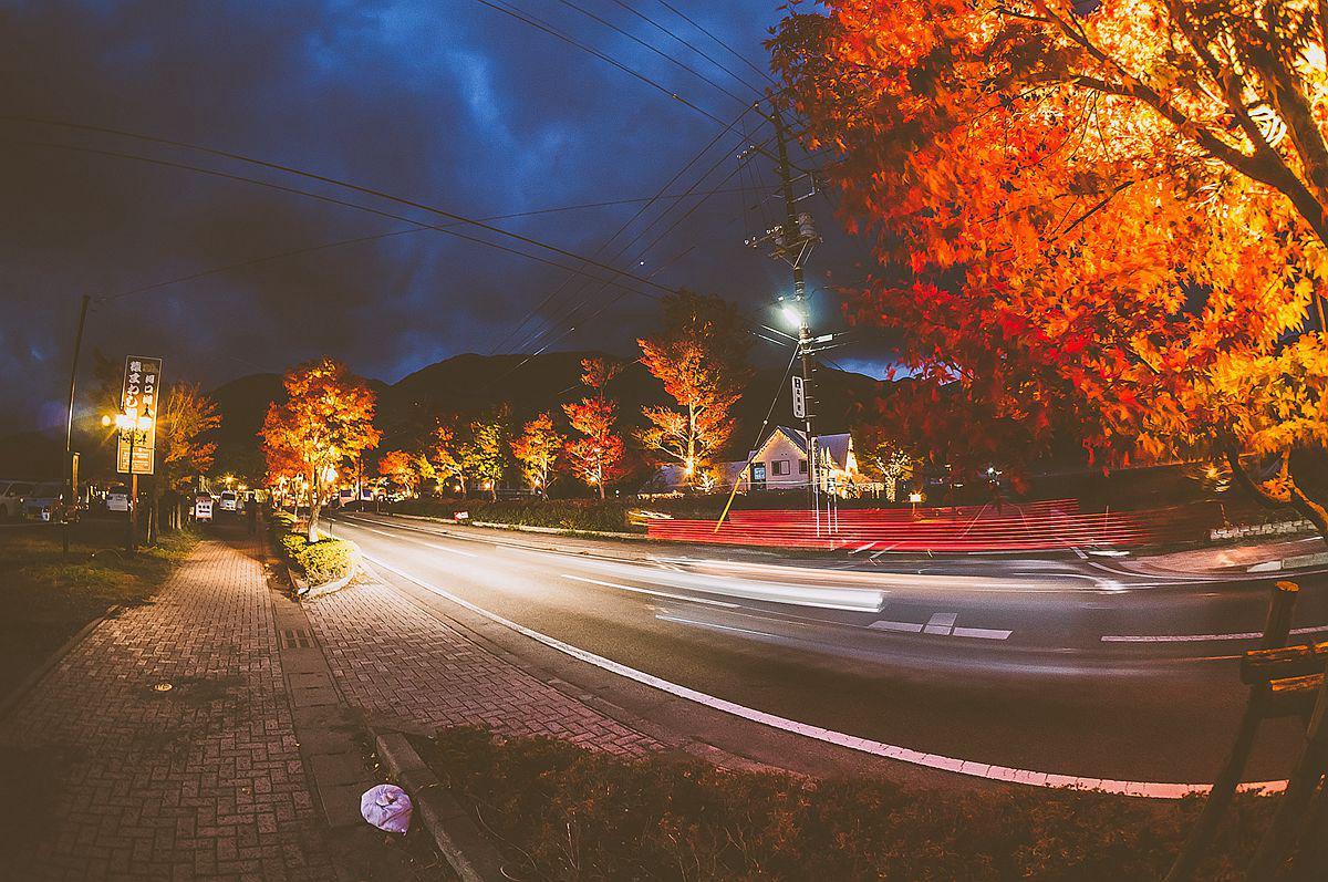 Kawaguchiko Autumn