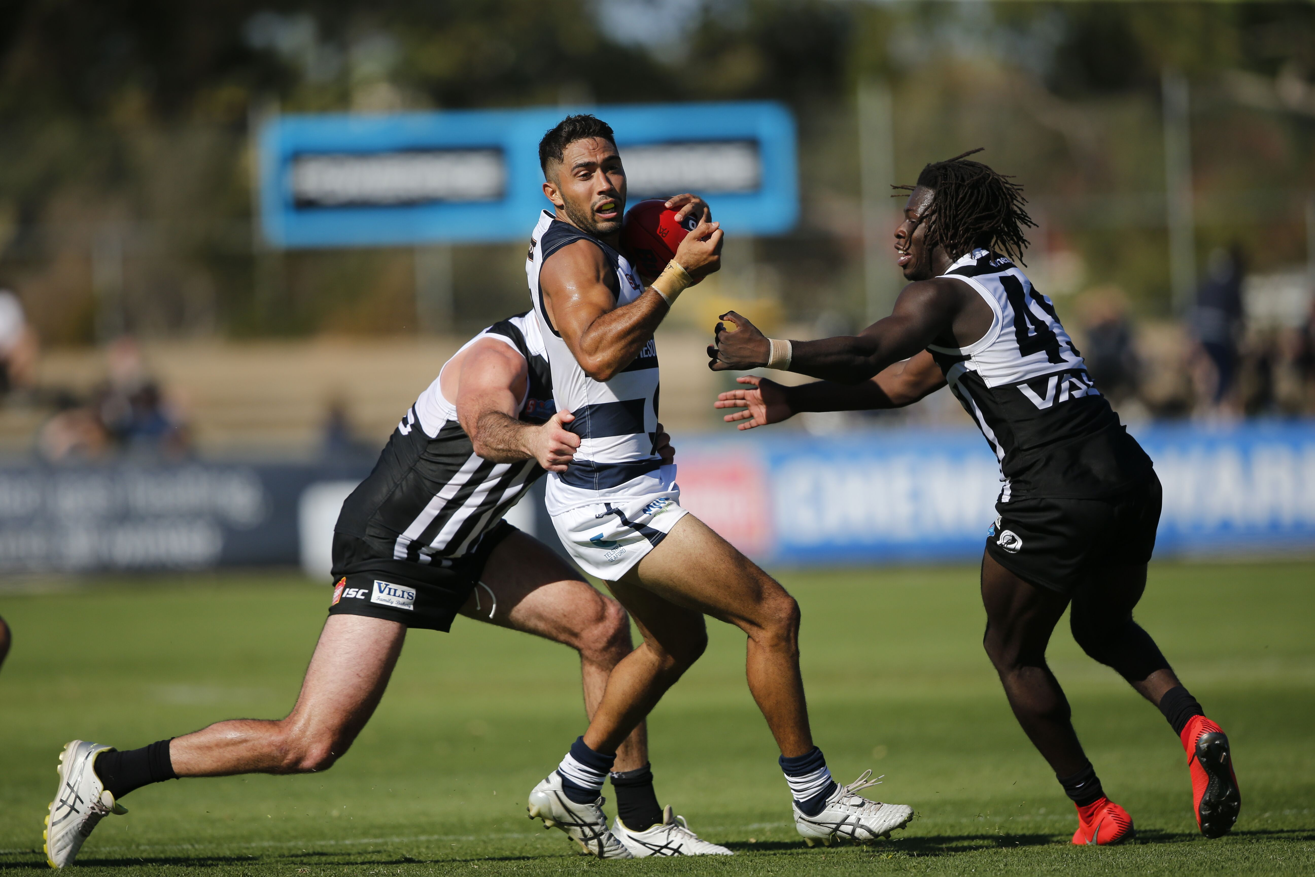 Panthers Top the Table - SANFL
