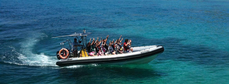 Murray River Cruises And Kangaroo Island