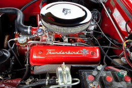 '55 Ford Thunderbird img_8418