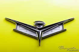 '59 Buick Electra img_4624