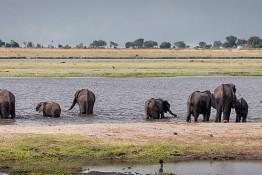 Chobe, Botswana img_0199