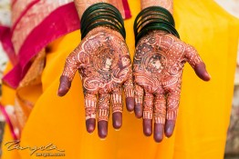 Bhumit & Aneesha's Wedding, India nv0a7662