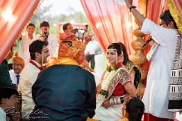 Bhumit & Aneesha's Wedding, India nv0a8193