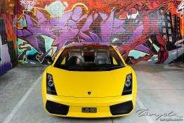 Lamborghini Gallardo SE nv0a1568