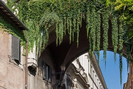 Rome, Italy dsc05876