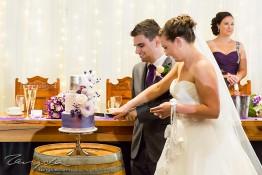 Matt & Jamie's Wedding nv0a7578