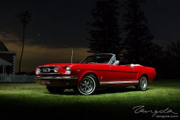 Mustang Owners Club Sydney Shoot 1j4c2145