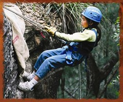 Normal abseiling cub