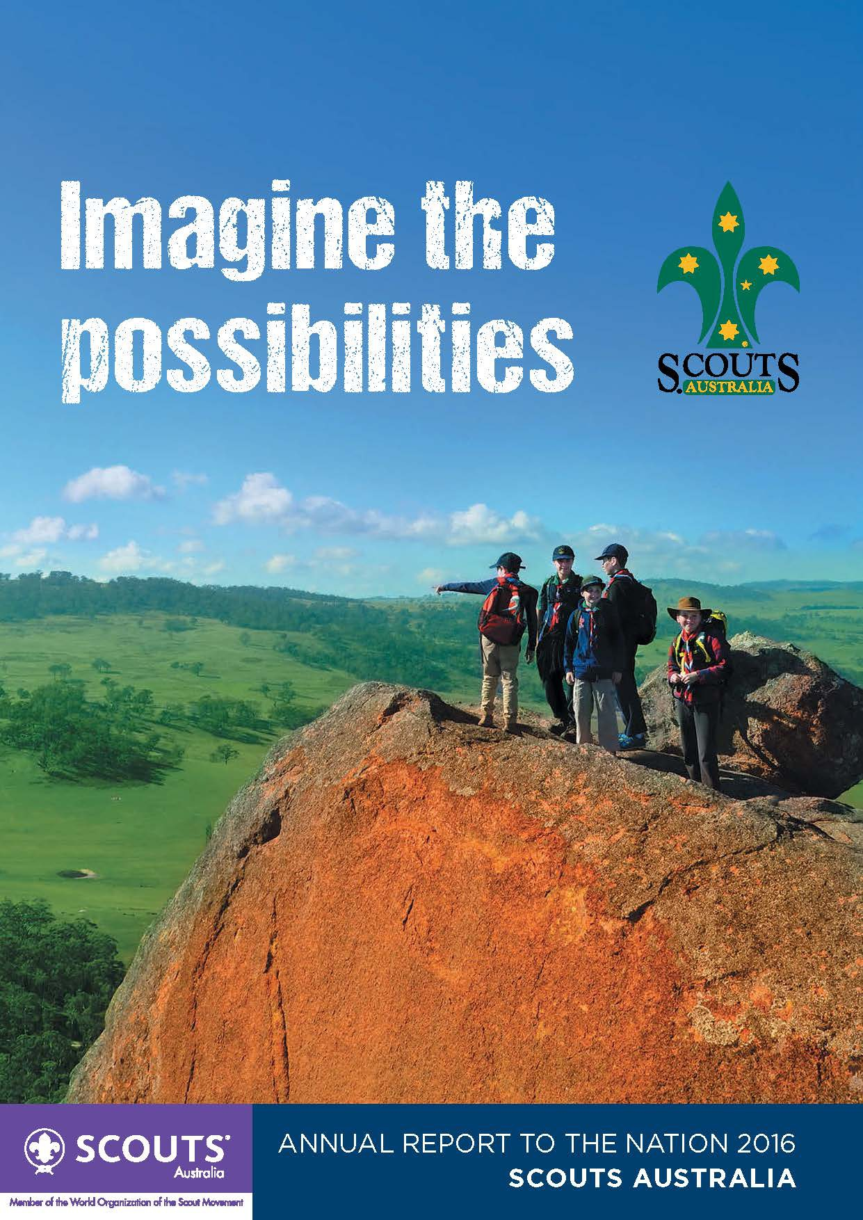 Scouts annual report web page 01