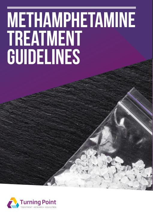 Methamphetamine Treatment Guidelines Front Cover
