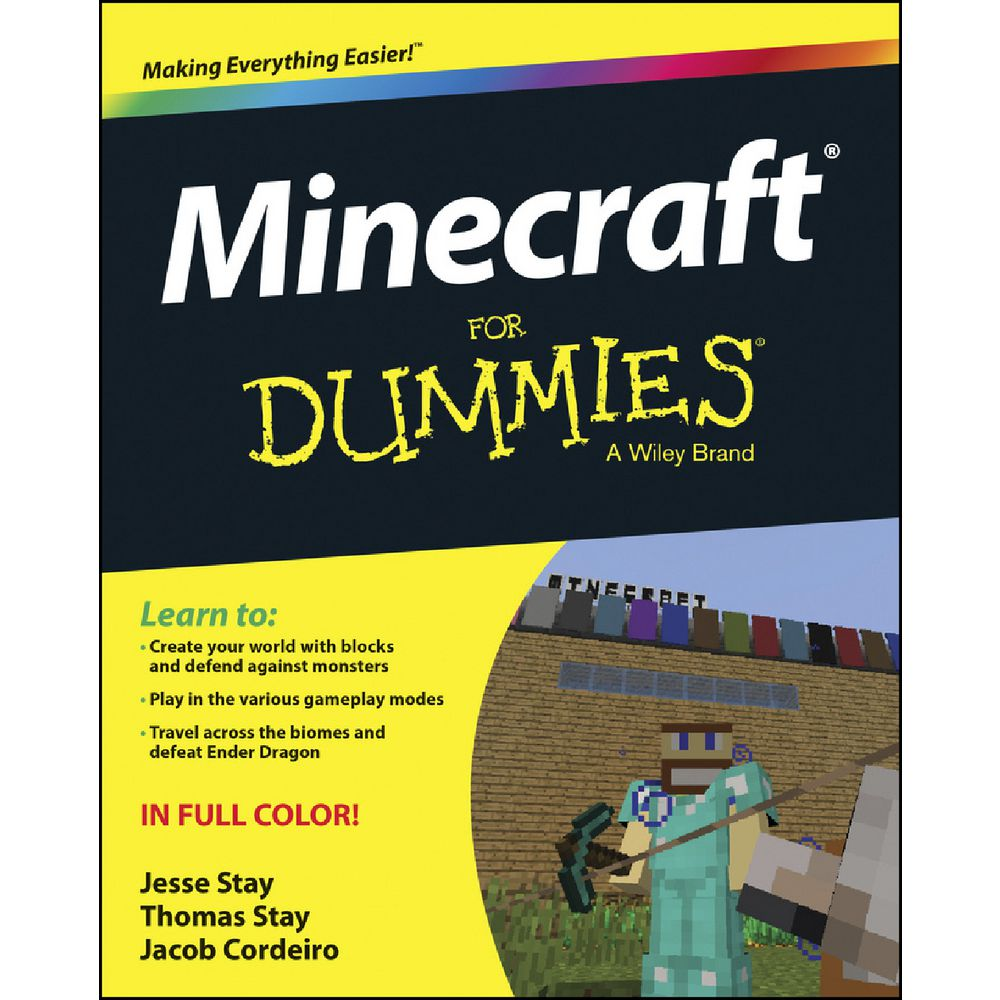 Image result for minecraft for dummies