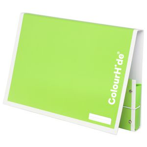 ColourHide My Handy Document Box A4 Green