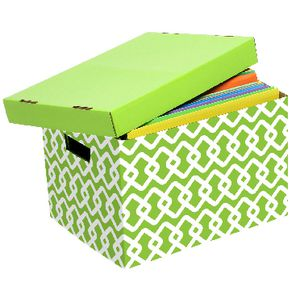 Marbig Patterned Archive Box Green and White