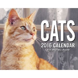 2016 Mini Day to Day Calendar Cats