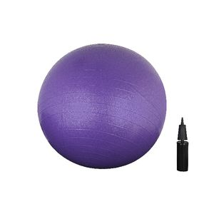Jolt Gym Ball 65cm With Pump Purple