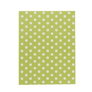 Display Book A4 Hard Cover 20 Pocket Fixed Spot/Stripe Lime