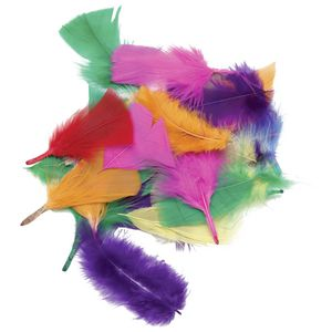 ELC Coloured Feathers 18g