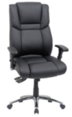 Executive Chairs category image