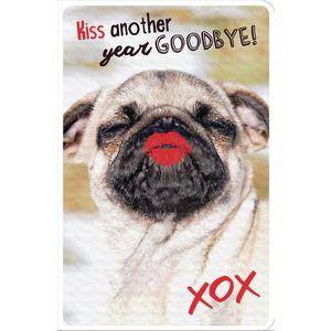 Frankly Funny Birthday Card Pug | Officeworks