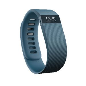 Fitbit Charge Activity Tracker Large Slate