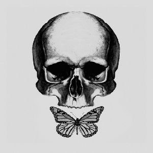 45x45cm Pre-Printed Canvas Skull & Butterfly
