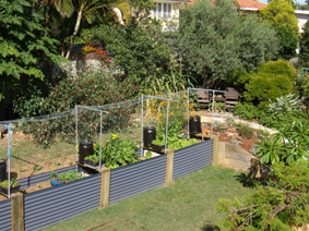 Garden Design With Plan To Plant Horticultural Garden Design Services Garden  Styles With Home Gardens From