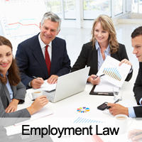 Workplace & Employment Lawyer