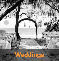 Sunshine Coast Wedding Decorator