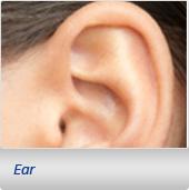 Ear Plastic Sugery
