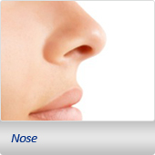 Nose Plastic Sugery