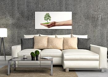 Colour Scheme Eco Theme Lounge Room