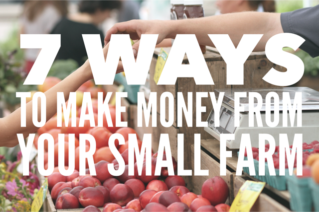 7 Ways To Make Money From Your Small Farm