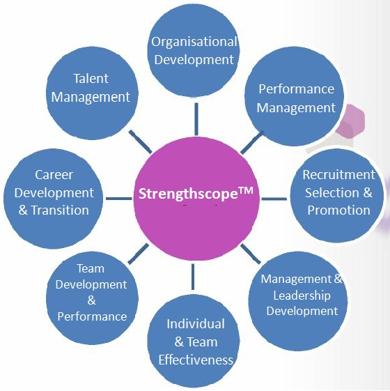Strengthscpe at Talent Tools