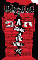 A Break in the Wall by Bruce Lachter