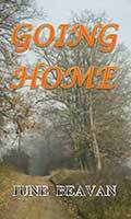 Going Home by Carol Chandler