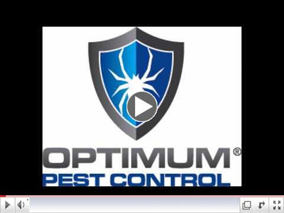 Optimum Pest Control