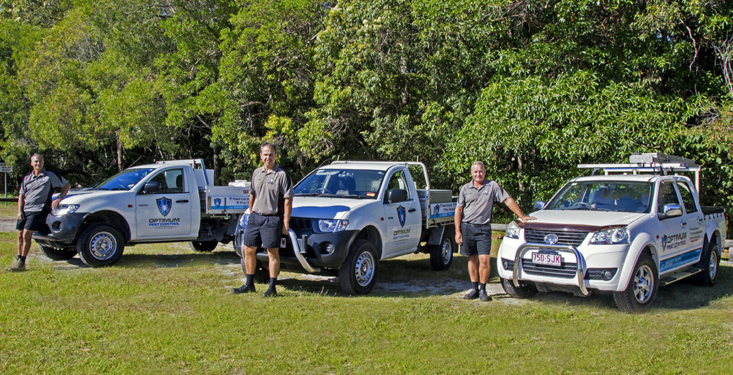 Licensed Pest Control Gold Coast