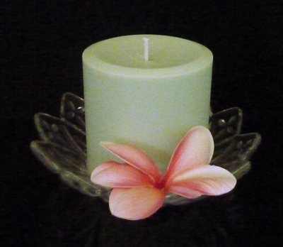 Soy Pillar, Mint Green Candles, Candles, Winters Night, Glasshouse, Ecoya, Dream Candles., Luxury Soy