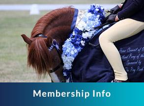 Membership info, horse and jockey