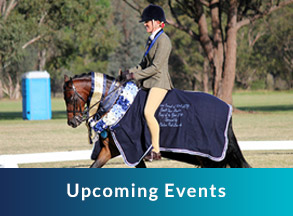 upcoming events, horse and jockey