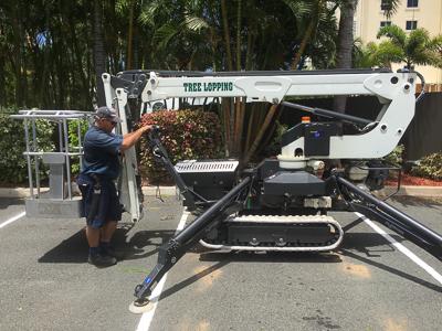 Aussie Palm Clean Mackay 12m elevated work platform hire