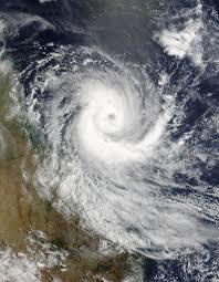 Aussie Palm Clean Mackay yard clean up cyclone season prepared