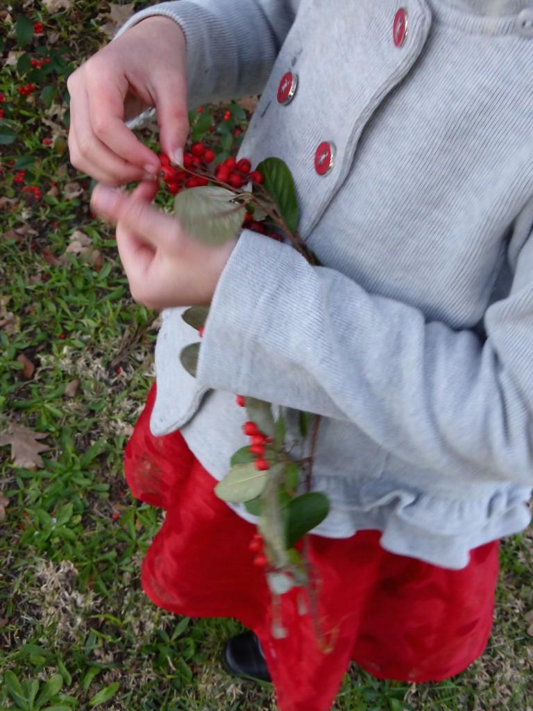 Imogen berries 2