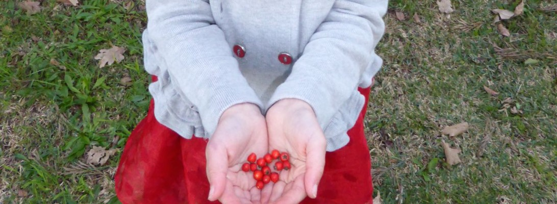 handful berries