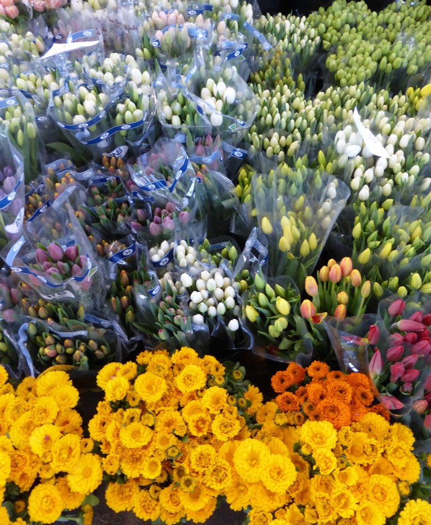 flower market 5