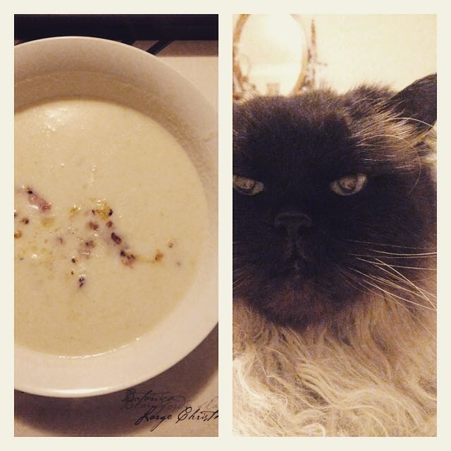soup bond