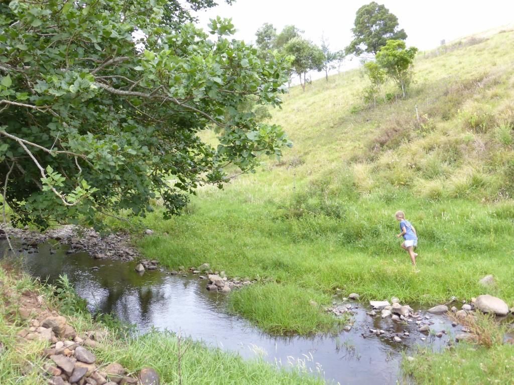 creek immy