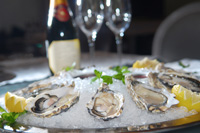 Oysters - Fine Dining
